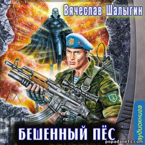 Вячеслав Шалыгин. Бешеный Пес. Абсолютный воин - 1. Аудиокнига