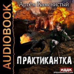 Аудиокнига «Практикантка» – Артем Каменистый