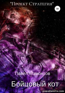 Павел Мамонтов. Бойцовый кот