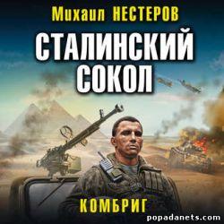 Михаил Нестеров. Сталинский сокол - 2. Комбриг. Аудио