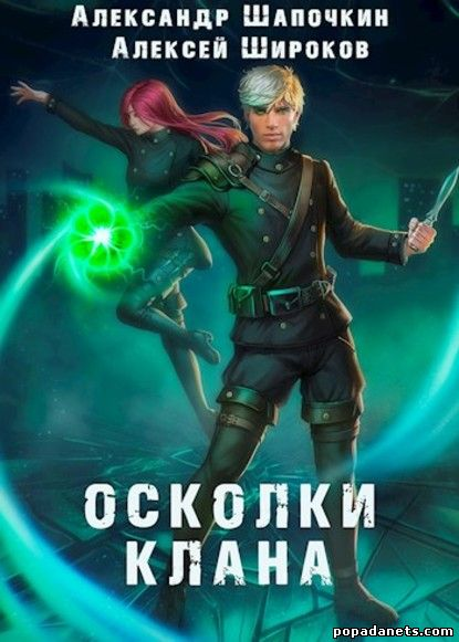 Алексей Широков, Александр Шапочкин. Осколки клана. Игнис 2