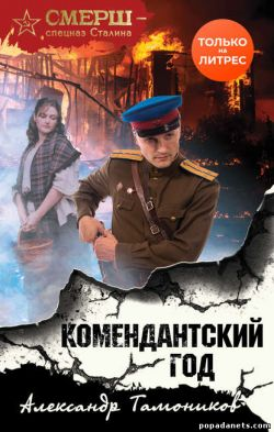 Александр Тамоников. Комендантский год